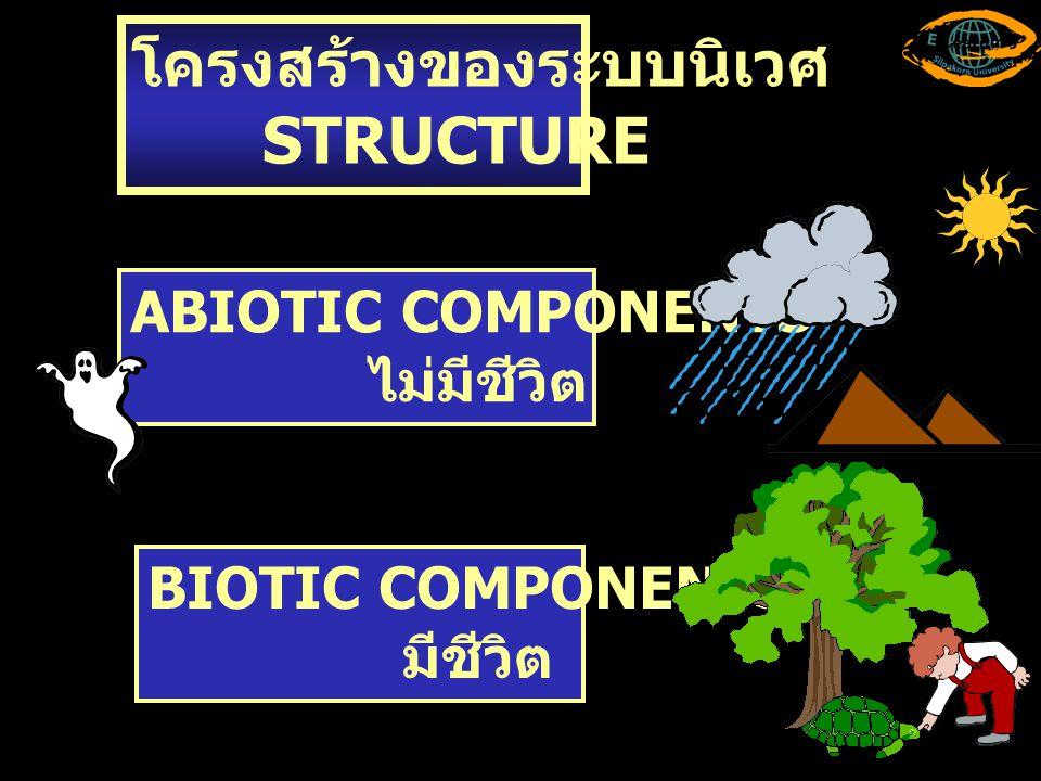 โครงสร้างของระบบนิเวศ STRUCTURE ABIOTIC COMPONENTS ไม่มีชีวิต BIOTIC COMPONENTS มีชีวิต