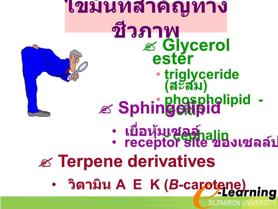 เกลือของกรด ไขมัน --- สบู่  เกลือของ Na + หรือ K + จะเกิดไมเซลล์  เกลือของ Ca ++ หรือ Mg ++ จะเกิดไคลสบู่