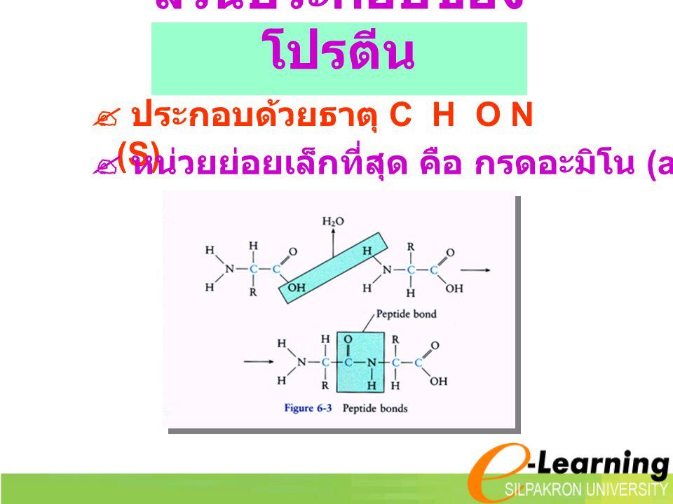 ส่วนประกอบของ โปรตีน  ประกอบด้วยธาตุ C H O N (S)  หน่วยย่อยเล็กที่สุด คือ กรดอะมิโน (amino acid)