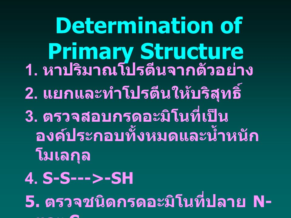 Determination of Primary Structure 1. หาปริมาณโปรตีนจากตัวอย่าง 2. แยกและทำโปรตีนให้บริสุทธิ์ 3. ตรวจสอบกรดอะมิโนที่เป็น องค์ประกอบทั้งหมดและน้ำหนัก โ