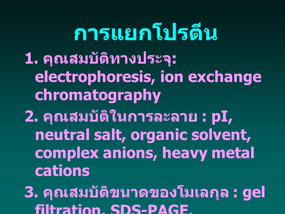 การแยกโปรตีน 1. คุณสมบัติทางประจุ : electrophoresis, ion exchange chromatography 2. คุณสมบัติในการละลาย : pI, neutral salt, organic solvent, complex a