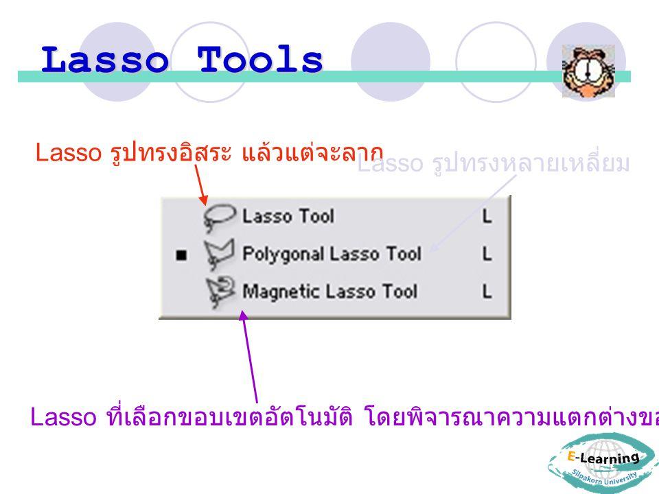 Lasso Tools Lasso รูปทรงอิสระ แล้วแต่จะลาก Lasso รูปทรงหลายเหลี่ยม Lasso ที่เลือกขอบเขตอัตโนมัติ โดยพิจารณาความแตกต่างของสีในบริเวณที่เมาส์ลากผ่าน