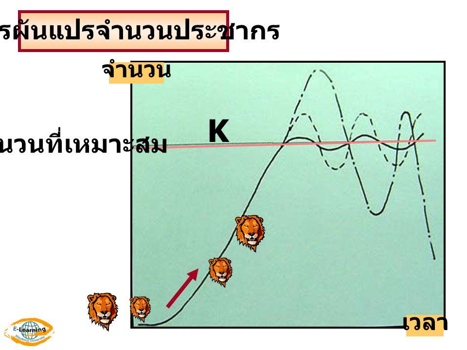 K เวลา จำนวน การผันแปรจำนวนประชากร จำนวนที่เหมาะสม