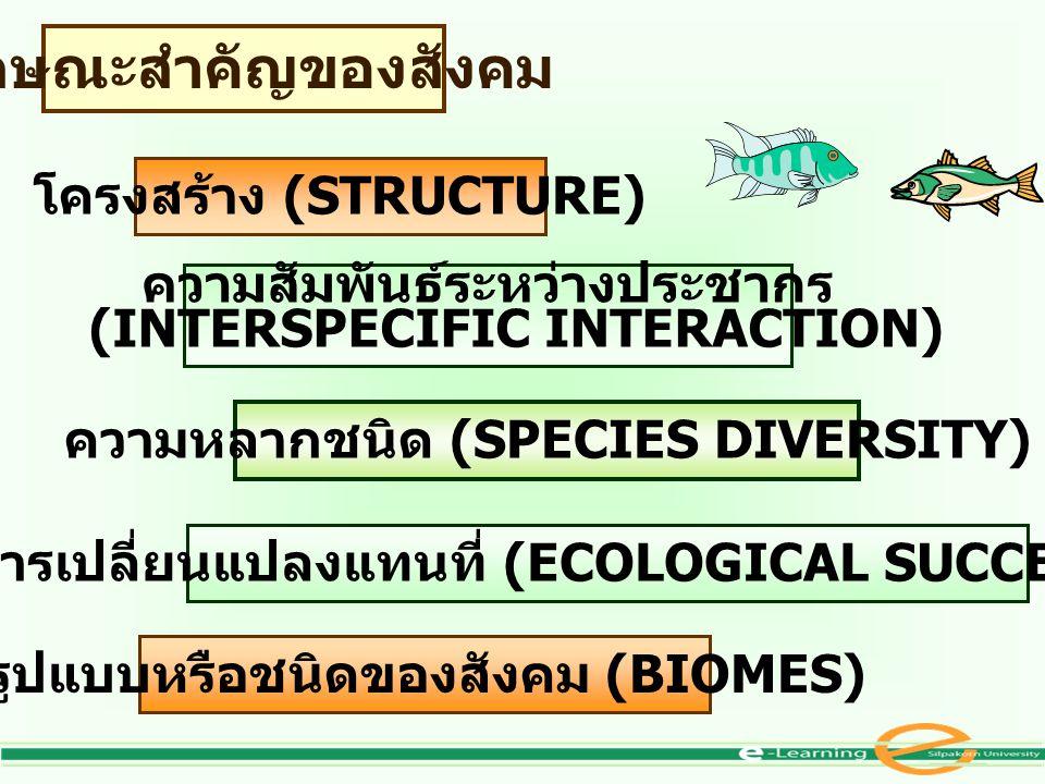 ลักษณะสำคัญของสังคม โครงสร้าง (STRUCTURE) ความสัมพันธ์ระหว่างประชากร (INTERSPECIFIC INTERACTION) ความหลากชนิด (SPECIES DIVERSITY) การเปลี่ยนแปลงแทนที่