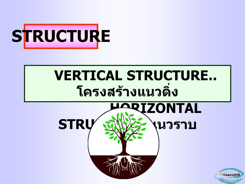 VERTICAL STRUCTURE.. โครงสร้างแนวดิ่ง HORIZONTAL STRUCTURE.. แนวราบ STRUCTURE