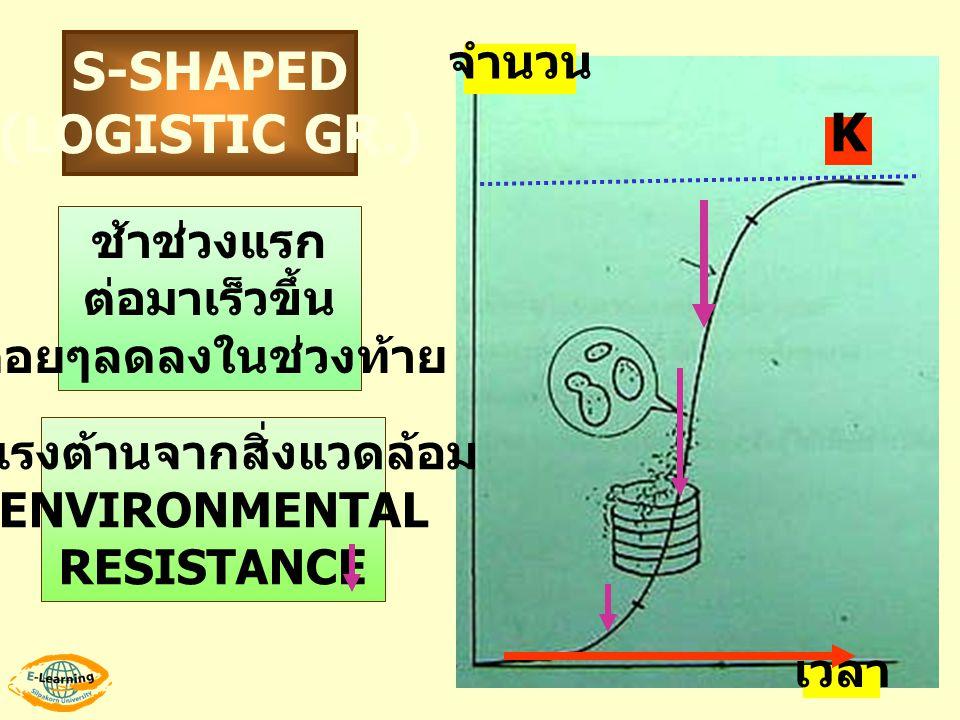 เวลา จำนวน S-SHAPED (LOGISTIC GR.) ช้าช่วงแรก ต่อมาเร็วขึ้น ค่อยๆลดลงในช่วงท้าย มีแรงต้านจากสิ่งแวดล้อม ENVIRONMENTAL RESISTANCE K