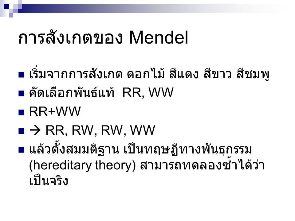 การสังเกตของ Mendel เริ่มจากการสังเกต ดอกไม้ สีแดง สีขาว สีชมพู คัดเลือกพันธ์แท้ RR, WW RR+WW  RR, RW, RW, WW แล้วตั้งสมมติฐาน เป็นทฤษฏีทางพันธุกรรม (hereditary theory) สามารถทดลองซ้ำได้ว่า เป็นจริง
