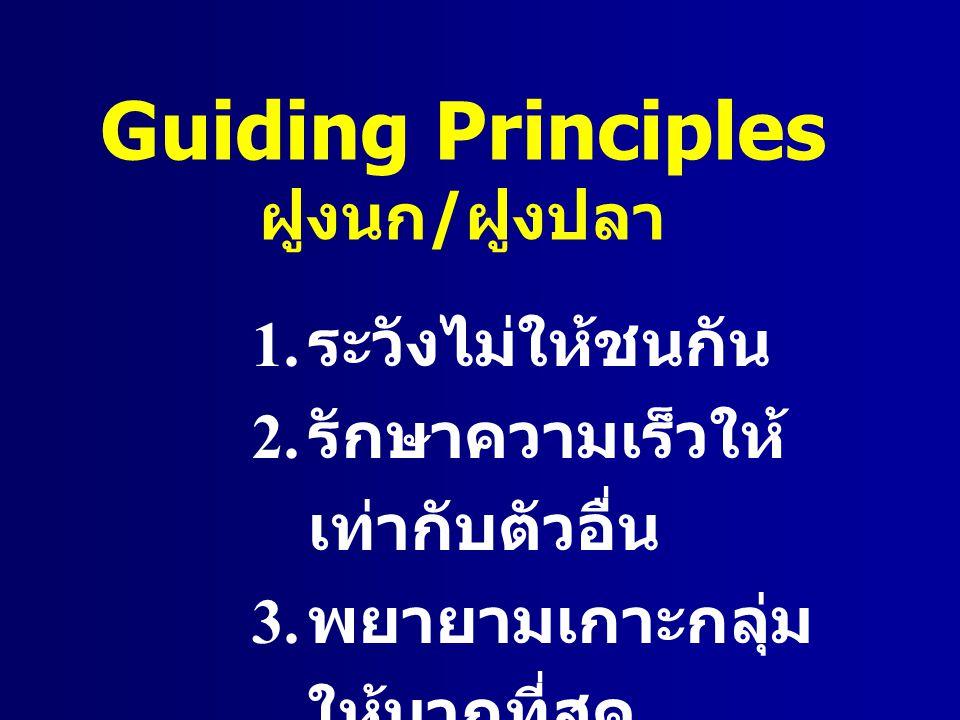 Guiding Principles ฝูงนก / ฝูงปลา 1. ระวังไม่ให้ชนกัน 2. รักษาความเร็วให้ เท่ากับตัวอื่น 3. พยายามเกาะกลุ่ม ให้มากที่สุด