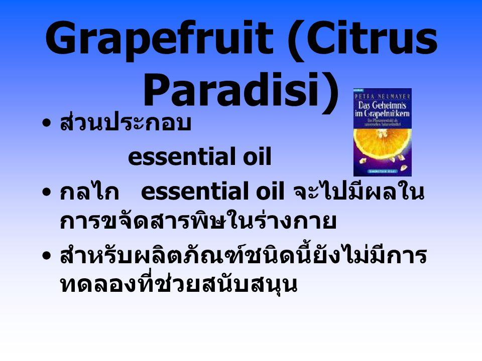 Grapefruit (Citrus Paradisi) ส่วนประกอบ essential oil กลไก essential oil จะไปมีผลใน การขจัดสารพิษในร่างกาย สำหรับผลิตภัณฑ์ชนิดนี้ยังไม่มีการ ทดลองที่ช