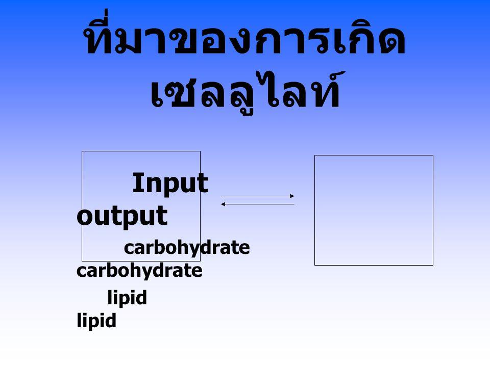 ที่มาของการเกิด เซลลูไลท์ Input output carbohydrate carbohydratelipid