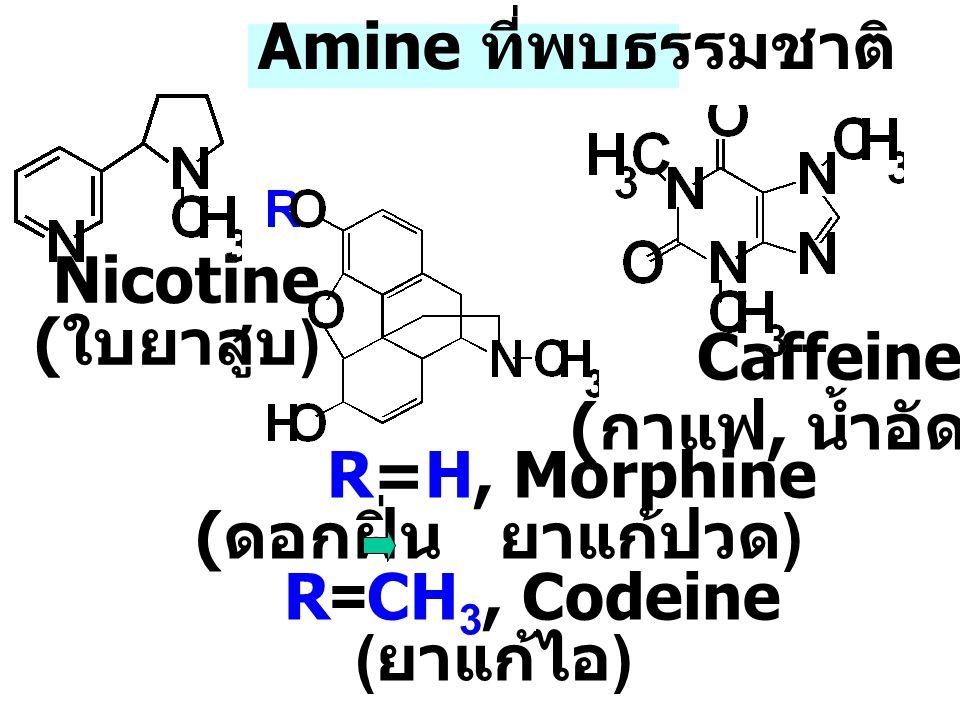 1 Amines เอมีนหรืออะมีนเป็นสารอินทรีย์ที่ N-atom ต่อกับ C-atom 1-3 อะตอม เป็นอนุพันธ์ของ NH 3 เอมีนมีสมบัติเป็นทั้งเบส (basicity) และ เป็น Nucleophile เพราะที่ N-atom มี e - คู่ อิสระ (lone pair e - ) [NH 4 ] + [OH] - NH 3 รับโปรตอน (H + ) จากน้ำ ammonia + H-O-H NH3NH3