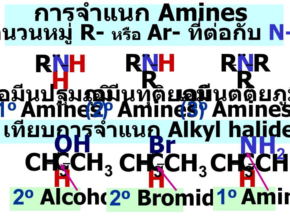 H N H N H N H-bond Carboxylic acid เปรียบเทียบจุดเดือดของ สารอินทรีย์ที่มี น้ำหนักโมเลกุลใกล้เคียงกัน > alcohol > ketone โครงสร้างและสมบัติทางกายภาพ N เอมีนมี N-atom เป็น SP 3 (tetrahedral) เป็นโมเลกุลมีขั้วและถ้ามีหมู่ N-H จะมี H-bonding ระหว่าง โมเลกุล > amine H H H 107 0 > 3 0 amine 1 0 และ 2 0 amine