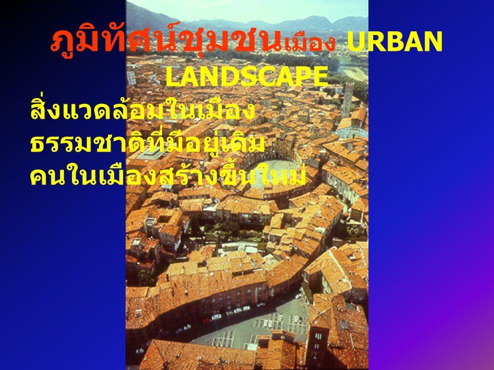 ภูมิทัศน์ชุมชน เมือง URBAN LANDSCAPE สิ่งแวดล้อมในเมือง ธรรมชาติที่มีอยู่เดิม คนในเมืองสร้างขึ้นใหม่