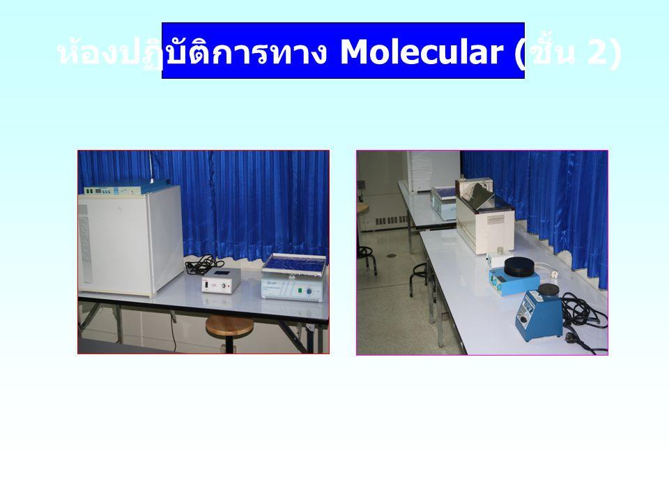 ห้องปฏิบัติการทาง Molecular ( ชั้น 2)