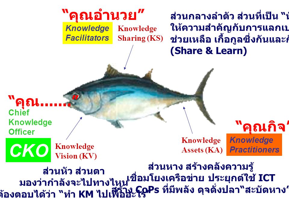 "Knowledge Assets (KA) Knowledge Vision (KV) ส่วนหัว ส่วนตา มองว่ากำลังจะไปทางไหน ต้องตอบได้ว่า "" ทำ KM ไปเพื่ออะไร "" Knowledge Sharing (KS) ส่วนกลางลำ"