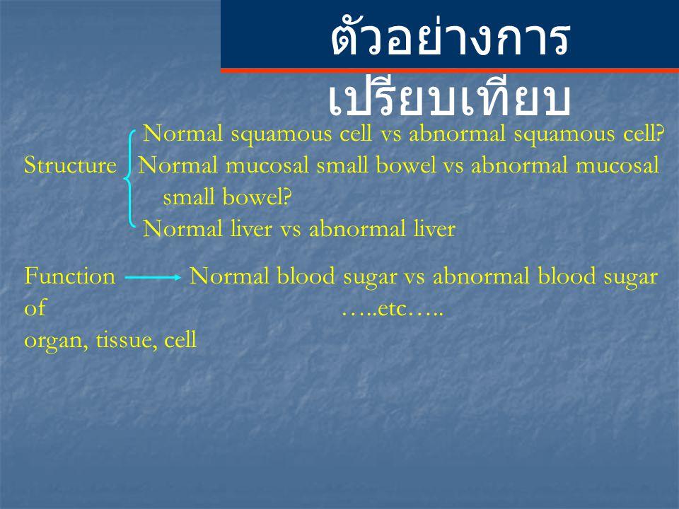 ตัวอย่างการ เปรียบเทียบ Normal squamous cell vs abnormal squamous cell? Structure Normal mucosal small bowel vs abnormal mucosal small bowel? Normal l