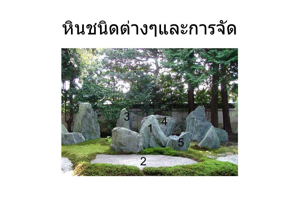 หินชนิดต่างๆและการจัด 1 2 3 5 4