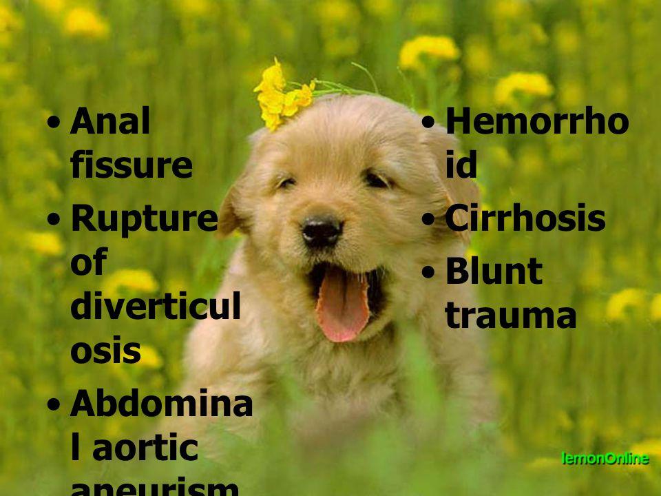 Anal fissure Rupture of diverticul osis Abdomina l aortic aneurism Thalasemi a Hemorrho id Cirrhosis Blunt trauma