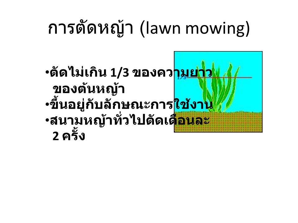 การตัดหญ้า (lawn mowing) ตัดไม่เกิน 1/3 ของความยาว ของต้นหญ้า ขึ้นอยู่กับลักษณะการใช้งาน สนามหญ้าทั่วไปตัดเดือนละ 2 ครั้ง
