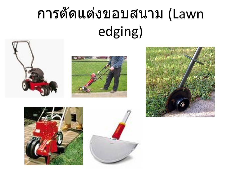 การตัดแต่งขอบสนาม (Lawn edging)