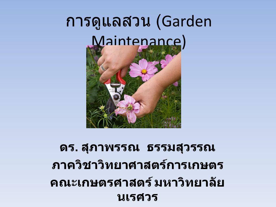 การดูแลรักษาสวน การบำรุงรักษาสนามหญ้า (lawn improvement) การตัดแต่งทรงพุ่ม (pruning) การใส่ปุ๋ย (fertilization) การกำจัดวัชพืช (weeding) การควบคุมศัตรูพืช (pest control) การปรับปรุงสวน (garden improvement)