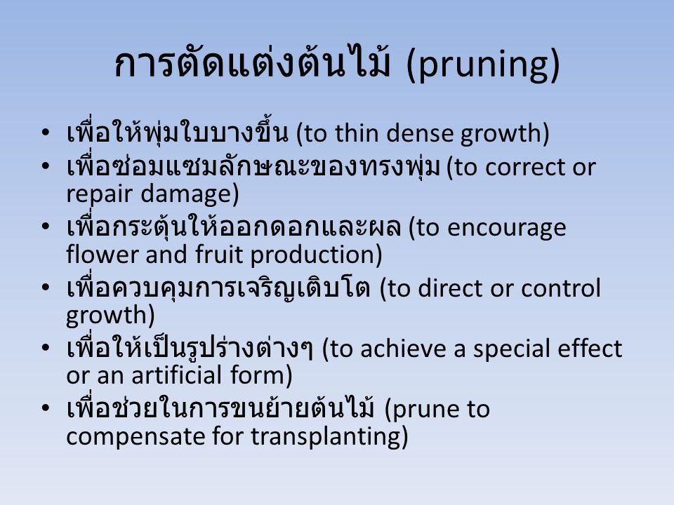 การตัดแต่งต้นไม้ (pruning) เพื่อให้พุ่มใบบางขึ้น (to thin dense growth) เพื่อซ่อมแซมลักษณะของทรงพุ่ม (to correct or repair damage) เพื่อกระตุ้นให้ออกด