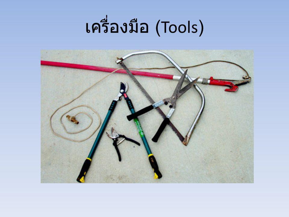 เครื่องมือ (Tools)