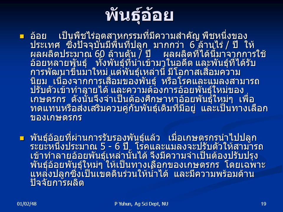 01/02/48 19P Yuhun, Ag Sci Dept, NUพันธุ์อ้อย อ้อย เป็นพืชไร่อุตสาหกรรมที่มีความสำคัญ พืชหนึ่งของ ประเทศ ซึ่งปัจจุบันมีพื้นที่ปลูก มากกว่า 6 ล้านไร่ /