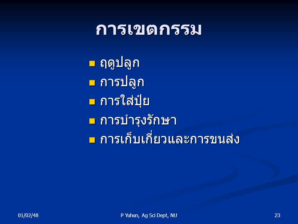 01/02/48 23P Yuhun, Ag Sci Dept, NU การเขตกรรม ฤดูปลูก ฤดูปลูก การปลูก การปลูก การใส่ปุ๋ย การใส่ปุ๋ย การบำรุงรักษา การบำรุงรักษา การเก็บเกี่ยวและการขน