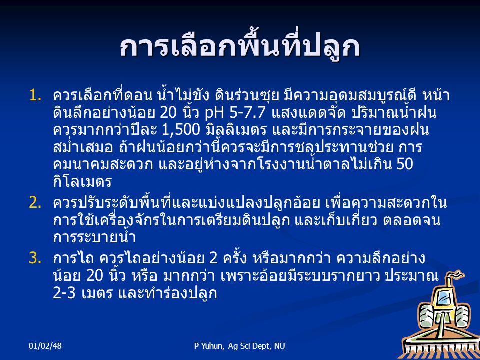 01/02/48 25P Yuhun, Ag Sci Dept, NU การเลือกพื้นที่ปลูก 1. 1.ควรเลือกที่ดอน น้ำไม่ขัง ดินร่วนซุย มีความอุดมสมบูรณ์ดี หน้า ดินลึกอย่างน้อย 20 นิ้ว pH 5
