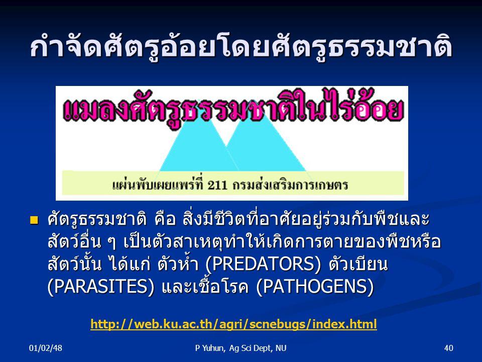 01/02/48 40P Yuhun, Ag Sci Dept, NU กำจัดศัตรูอ้อยโดยศัตรูธรรมชาติ ศัตรูธรรมชาติ คือ สิ่งมีชีวิตที่อาศัยอยู่ร่วมกับพืชและ สัตว์อื่น ๆ เป็นตัวสาเหตุทำใ