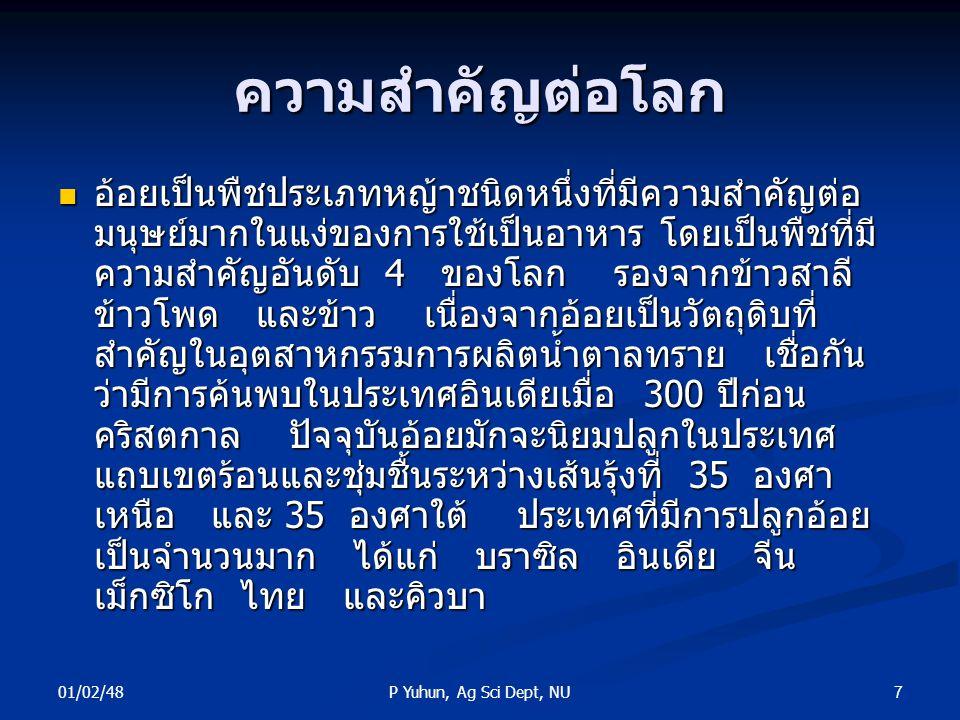 01/02/48 7P Yuhun, Ag Sci Dept, NU ความสำคัญต่อโลก อ้อยเป็นพืชประเภทหญ้าชนิดหนึ่งที่มีความสำคัญต่อ มนุษย์มากในแง่ของการใช้เป็นอาหาร โดยเป็นพืชที่มี คว