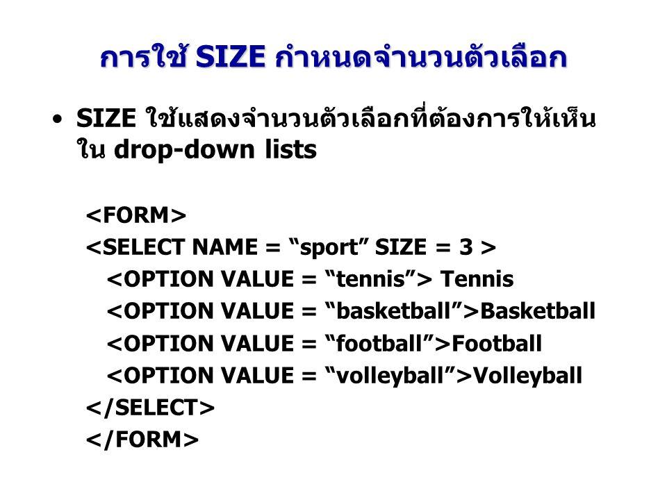 การใช้ SIZE กำหนดจำนวนตัวเลือก SIZE ใช้แสดงจำนวนตัวเลือกที่ต้องการให้เห็น ใน drop-down lists Tennis Basketball Football Volleyball