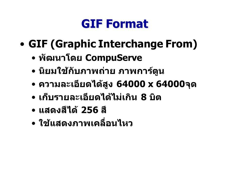 GIF Format GIF (Graphic Interchange From) พัฒนาโดย CompuServe นิยมใช้กับภาพถ่าย ภาพการ์ตูน ความละเอียดได้สูง 64000 x 64000จุด เก็บรายละเอียดได้ไม่เกิน 8 บิต แสดงสีได้ 256 สี ใช้แสดงภาพเคลื่อนไหว