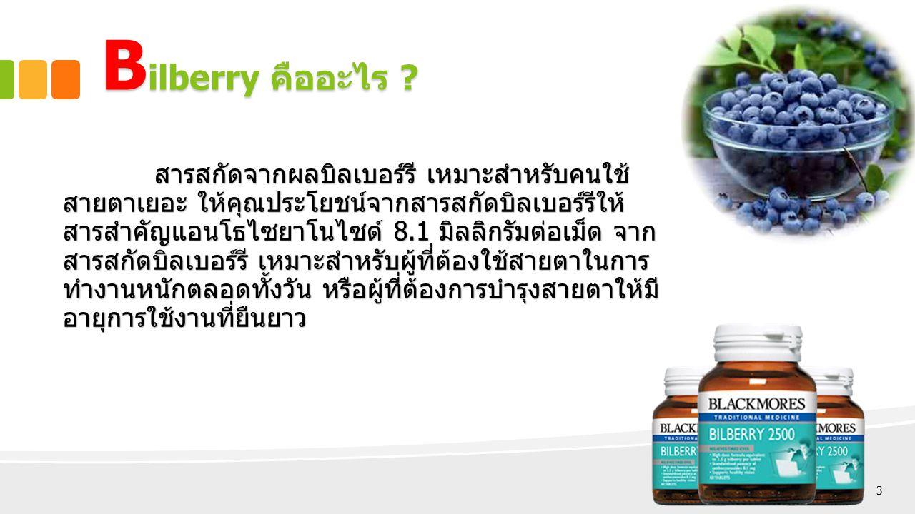 B ilberry คืออะไร .