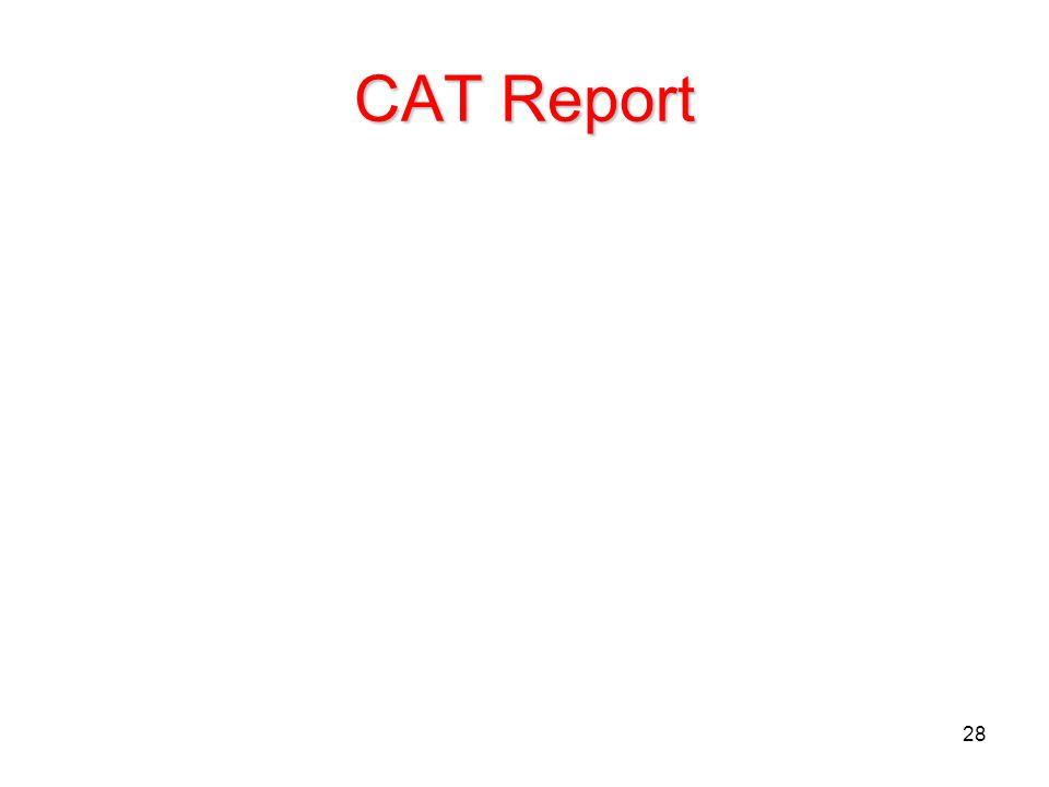 28 CAT Report