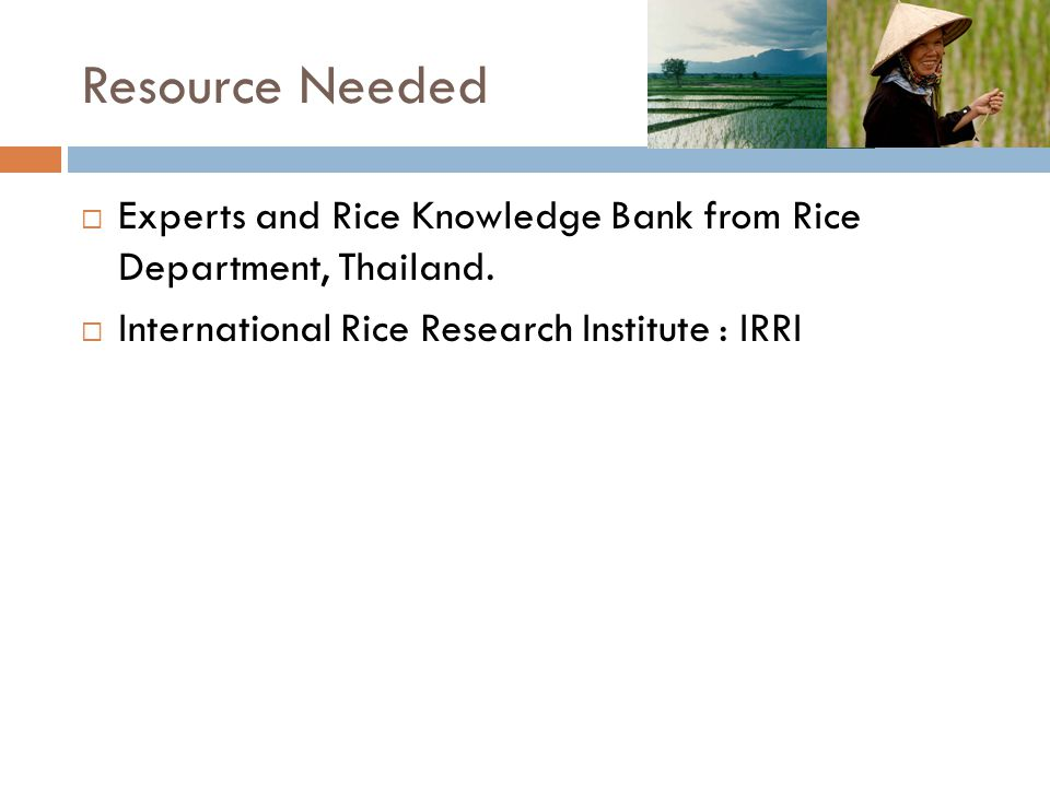 Resource Needed  Experts and Rice Knowledge Bank from Rice Department, Thailand.  International Rice Research Institute : IRRI