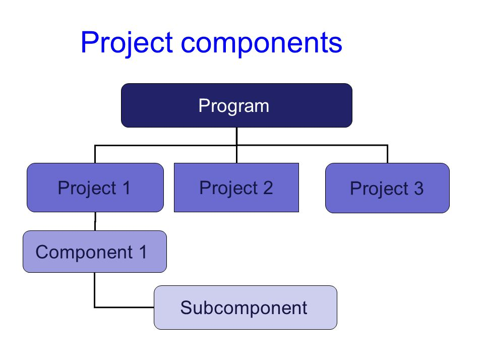 Project components Program Project 1 Project 2 Project 3 Component 1 Subcomponent