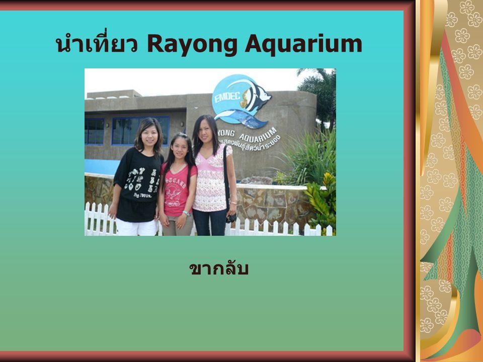 นำเที่ยว Rayong Aquarium ขากลับ