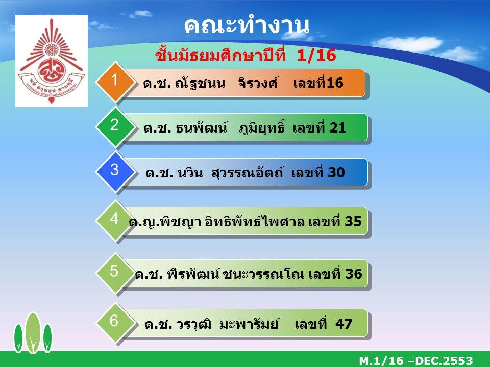 คณะทำงาน M.1/16 –DEC.2553 ด.ช.ณัฐชนน จิรวงศ์ เลขที่16 1 ด.ช.