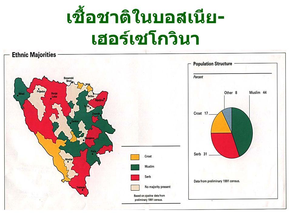 2/2550/40106 พรรณวิภา เชื้อชาติในบอสเนีย - เฮอร์เซโกวินา