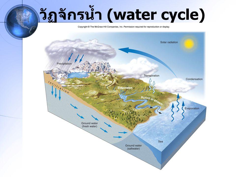น้ำจม (downwelling) น้ำจม เกิดจากการจมตัวของน้ำชั้นบนลงล่าง เมื่อมีลมพัดผ่านผิวน้ำในทิศทางขนานกับชายฝั่ง รวมทั้งผลจากแรงคอริออลิส ทำให้น้ำชั้นบนถูกพัด เข้าสู่ชายฝั่งในแนวตั้งฉากกับทิศทางลม แล้วจมตัว ลง