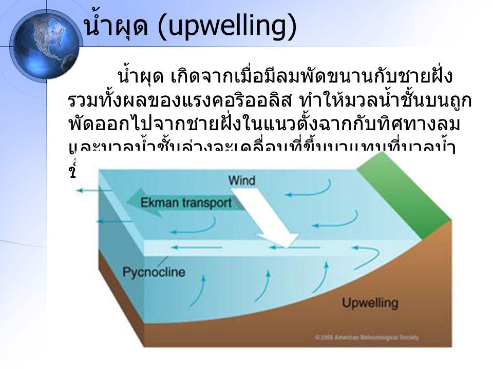 น้ำผุด (upwelling) น้ำผุด เกิดจากเมื่อมีลมพัดขนานกับชายฝั่ง รวมทั้งผลของแรงคอริออลิส ทำให้มวลน้ำชั้นบนถูก พัดออกไปจากชายฝั่งในแนวตั้งฉากกับทิศทางลม แล
