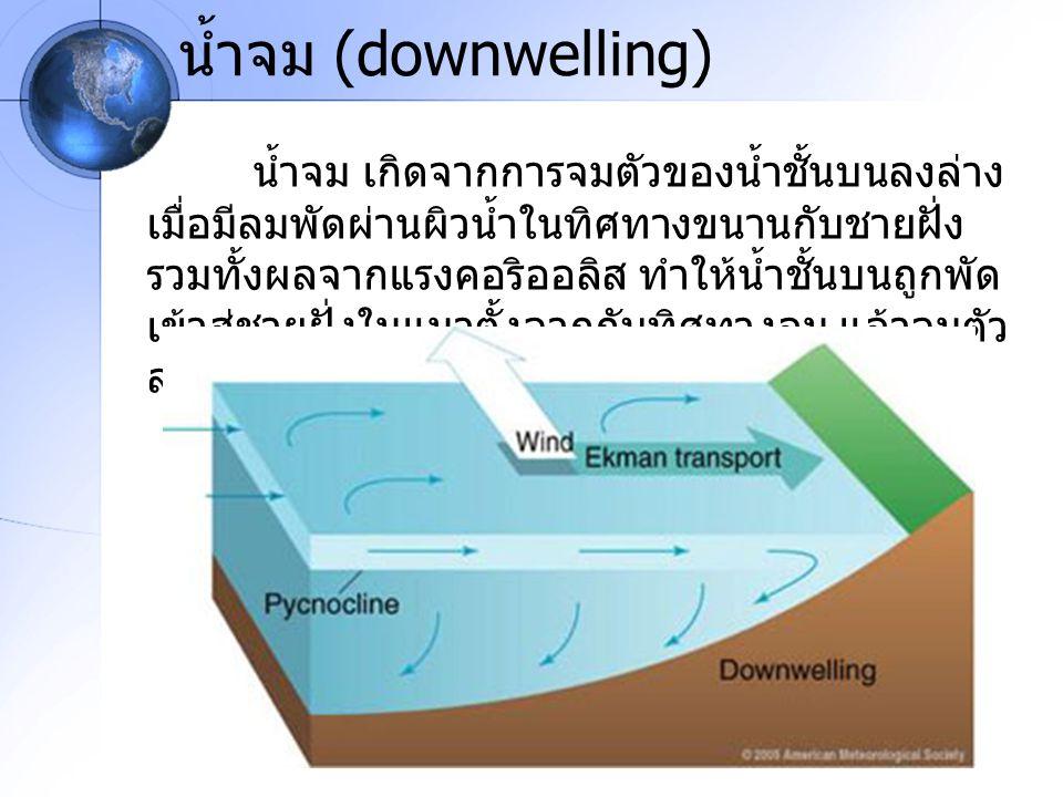 น้ำจม (downwelling) น้ำจม เกิดจากการจมตัวของน้ำชั้นบนลงล่าง เมื่อมีลมพัดผ่านผิวน้ำในทิศทางขนานกับชายฝั่ง รวมทั้งผลจากแรงคอริออลิส ทำให้น้ำชั้นบนถูกพัด