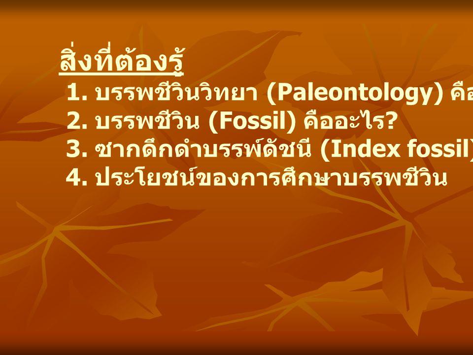 สิ่งที่ต้องรู้ 1. บรรพชีวินวิทยา (Paleontology) คืออะไร ? 2. บรรพชีวิน (Fossil) คืออะไร ? 3. ซากดึกดำบรรพ์ดัชนี (Index fossil) คืออะไร ? 4. ประโยชน์ขอ
