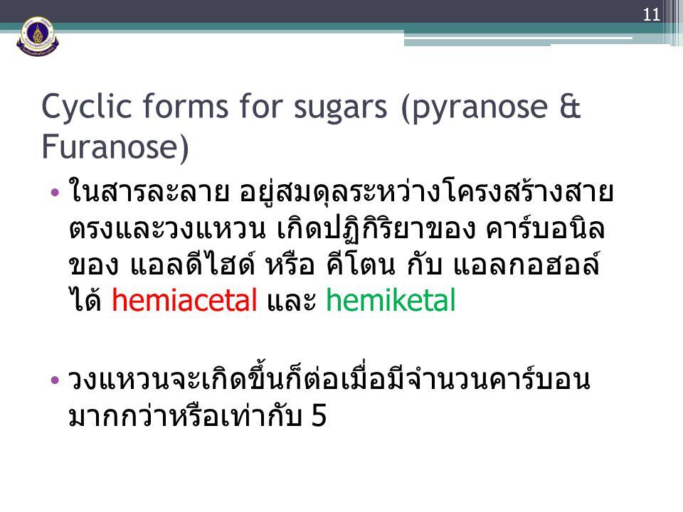 Cyclic forms for sugars (pyranose & Furanose) ในสารละลาย อยู่สมดุลระหว่างโครงสร้างสาย ตรงและวงแหวน เกิดปฏิกิริยาของ คาร์บอนิล ของ แอลดีไฮด์ หรือ คีโตน