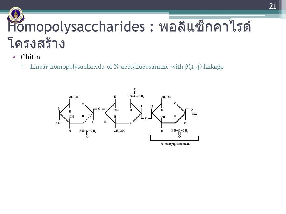 Homopolysaccharides : พอลิแซ็กคาไรด์ โครงสร้าง Chitin ▫Linear homopolysacharide of N-acetyllucosamine with  (1-4) linkage 21