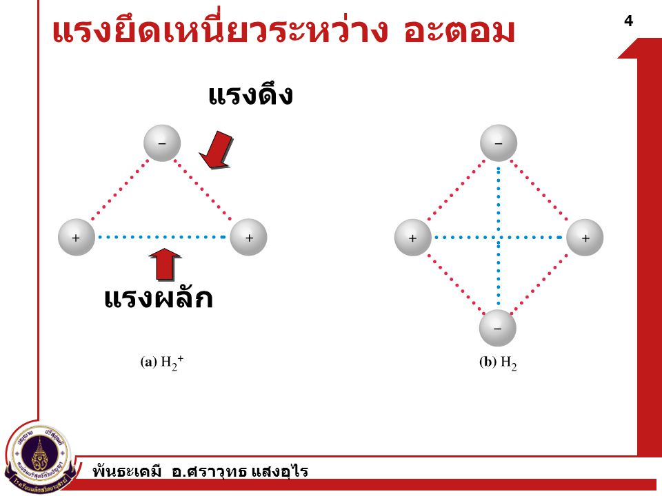 4 แรงยึดเหนี่ยวระหว่าง อะตอม แรงดึง แรงผลัก