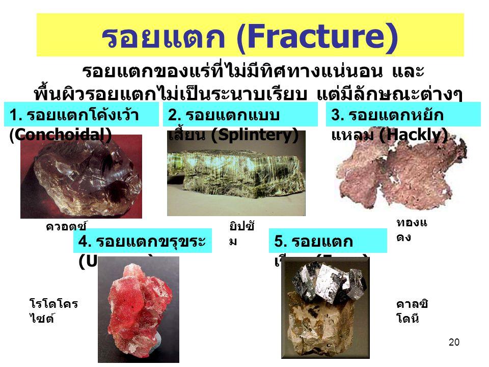 20 รอยแตก (Fracture) รอยแตกของแร่ที่ไม่มีทิศทางแน่นอน และ พื้นผิวรอยแตกไม่เป็นระนาบเรียบ แต่มีลักษณะต่างๆ กัน 1. รอยแตกโค้งเว้า (Conchoidal) 2. รอยแตก