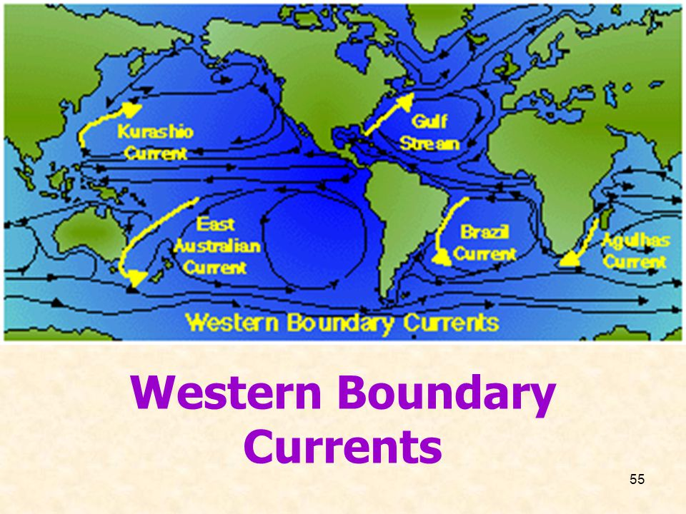55 Western Boundary Currents